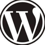 wordpress-logo-540x334